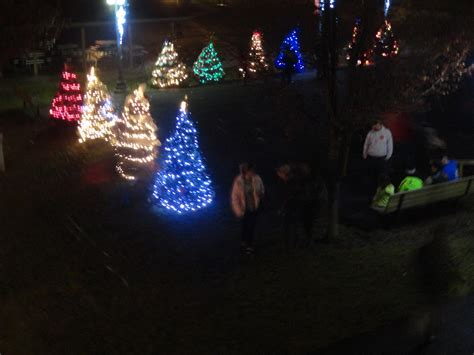 cambria festival of lights light up night photo gallery