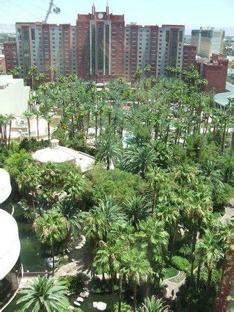 flamingoes garden resort cottage rates pool and garden area from 15th floor picture of flamingo