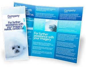 pin microsoft word brochure sampledoc on pinterest