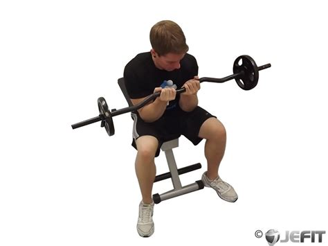 ez bar seated grip concentration curl exercise