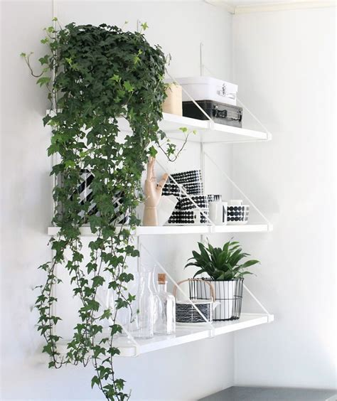 Plant Home Decor by 9 Gorgeous Ways To Decorate With Plants Melyssa Griffin