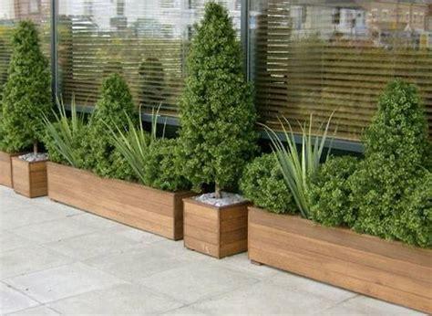 vasi per piante da esterno vasi per piante da esterno vasi come scegliere i vasi