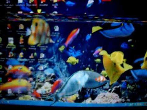 imagenes para pc con movimiento real peces en mi pc mov youtube