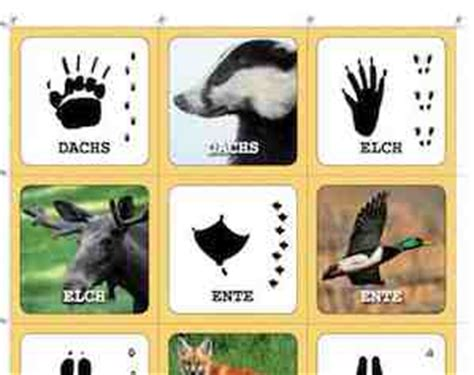 Wie Können Kinder Abnehmen by Memory Spiel Selber Machen Mit Mein Memo Net