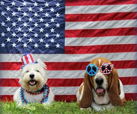 Bend Lapine School Calendar July 4th Pet Parade Downtown Bend Events The Source