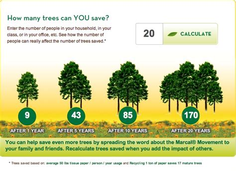 How Many Trees Are Used To Make Paper Each Year - paper from paper not from trees the motley