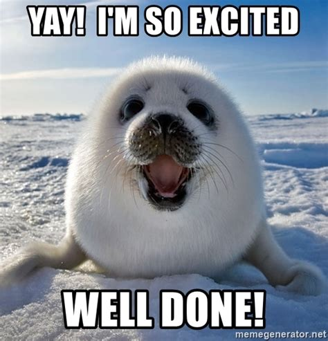 yay meme yay i m so excited well done congratulations seal