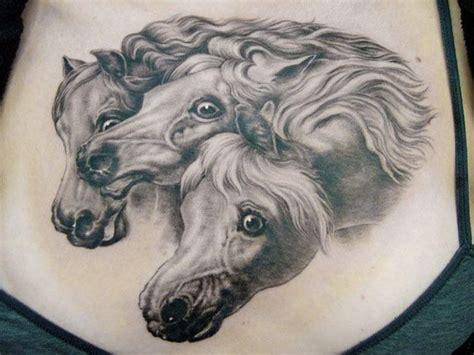 shane o neill tattoo artist artist shane o neill animal