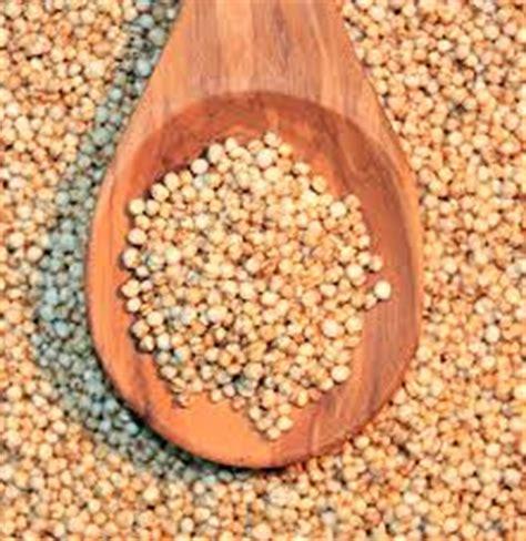 cucinare la quinoa come cucinare la quinoa lettera43 it