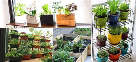 Apartment Balcony Vegetable Garden Balcony Vegetable Garden Ideas For Apartments Indroyal