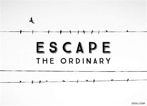 java pattern escape quote quote of the week escape the ordinary