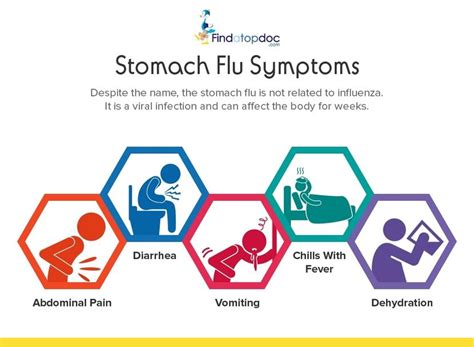 stomach flu stomach virus symptoms applecool info