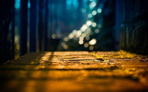 hd wallpapers lcd desktop close up land light tree sun blur bokeh background