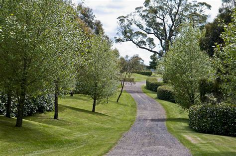 winding country driveway nsw nicholas bray landscapes
