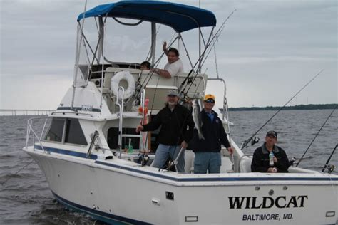 bertram 28 for sale boats we bertram 28 flybridge sportfishing machine