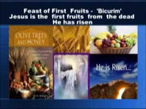 the feast youtube the feast s of yhwh and his timeclock by rachelle cohen