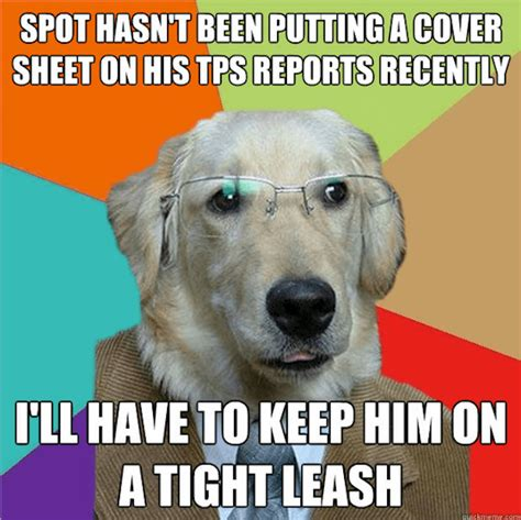 10 Dog Meme - 26 business dog meme pictures that will brighten up your