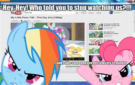 Mlp Funny Memes - pin funny mlp memes on pinterest
