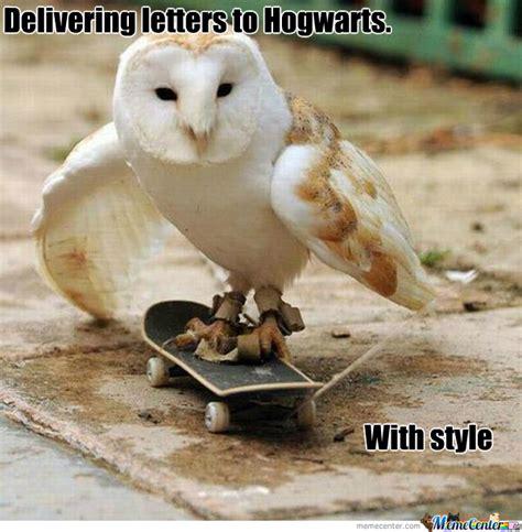 White Owl Meme - owl by mitelos meme center