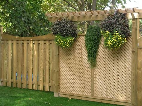 Backyard Privacy Lattice Ideas Yard Privacy Fence Plant Privacy Fence Ideas For Backyard