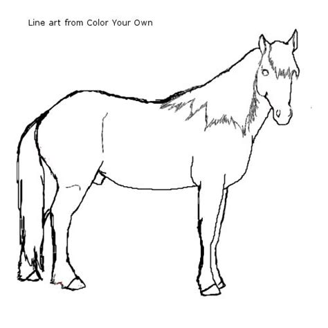 coloring pages of mustang horses nokota mustang stallion coloring page