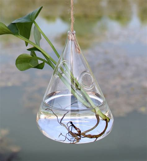 Aquatic Garden Vase by Hanging Water Drop Shaped Glass Hydroponics Flower Vase
