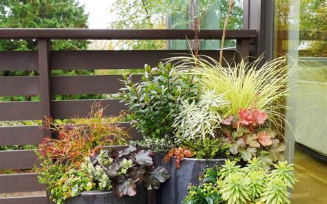 container gardening seattle seattle container design seattle landscape design