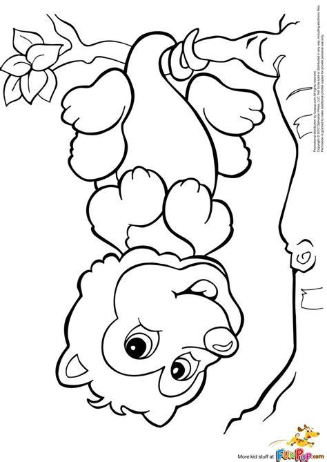 Possum Colouring Pages Az Coloring Pages Possum Colouring Pages