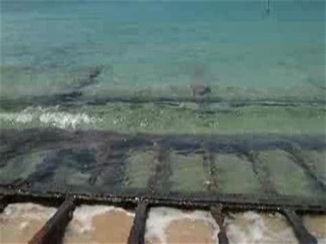 crash boat beach apartments crashboat beach with cave video of aguadilla puerto