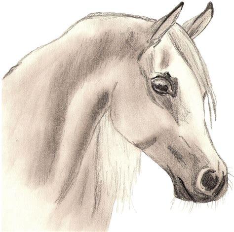Drawings In Pencil
