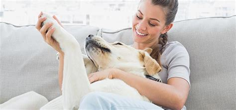 7 Benefits Of Owning A Pet by 7 Health Benefits Of Owning A Pet The Chopra Center