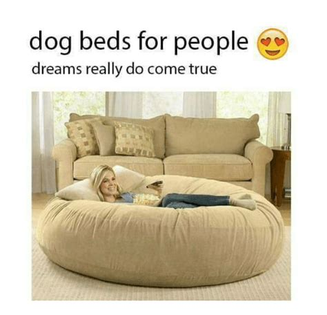 dog beds for people dog beds for people dreams really do come true dogs meme