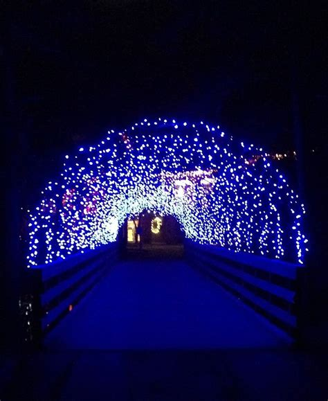 james island county park festival of lights 48 best holiday festival of lights images on pinterest