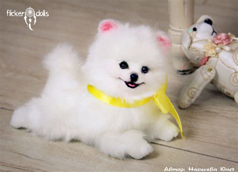 puppy princess princess puppy white spitz by flicker dolls on deviantart
