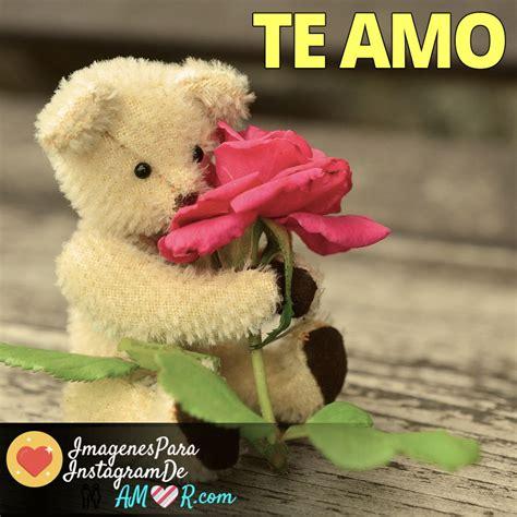 imagenes de rosas te amo ositos con flores y frase te amo imagenes de amor para
