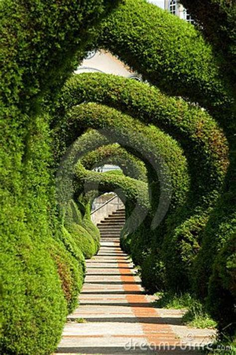 amazing gardens hedges arches and gardens on