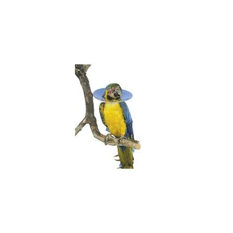buster bird collars