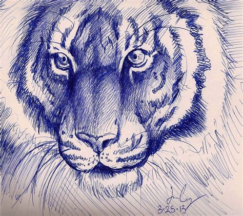 awesome pen doodles tiger sketch pen sketches sketches tigers