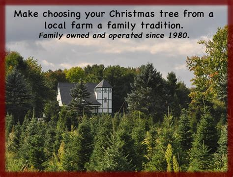 medina christmas tree farm