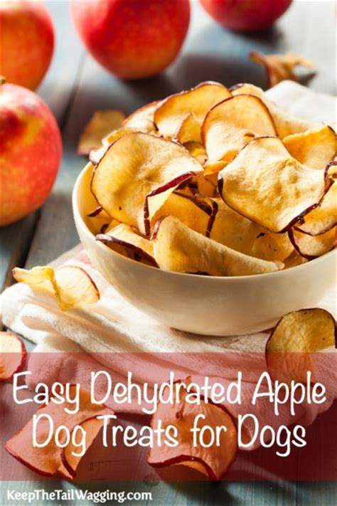 are apples for dogs serendipitous saturday easy dehydrated apple treats for dogs keep the wagging