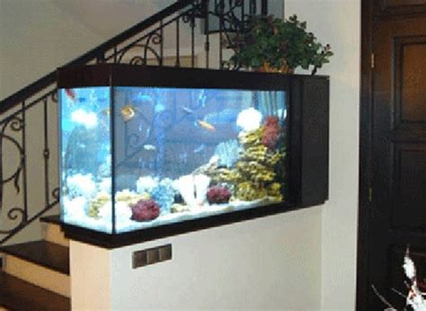 aquarium design tropical fish tank design ideas