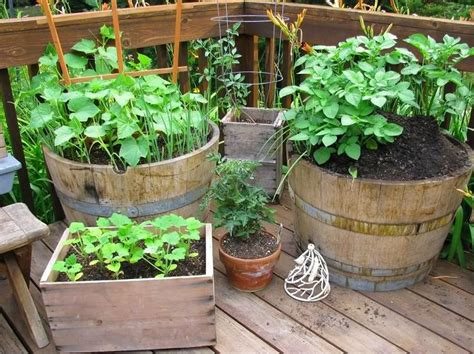 deck gardening containers pin by sue landreth on outdoors