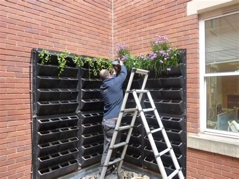 turn a vertical space into an edible living wall