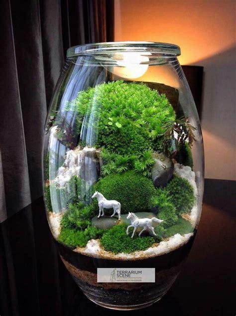 stunning bonsai terrarium  miniature landscaping