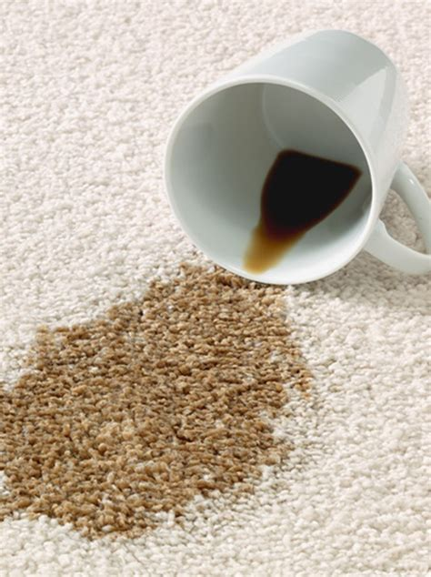 Coffee Stain On Rug by In The Battle With Carpet Stains At Home Cleanexpert