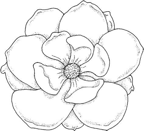 coloring page flower flower coloring pages kentscraft