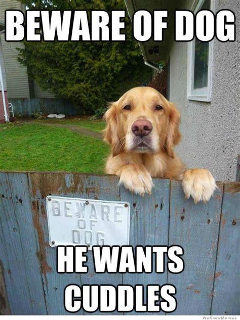 The Dog Meme - beware of dog weknowmemes