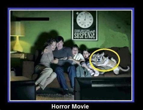 Movie Memes Funny - horror movie jokes memes pictures