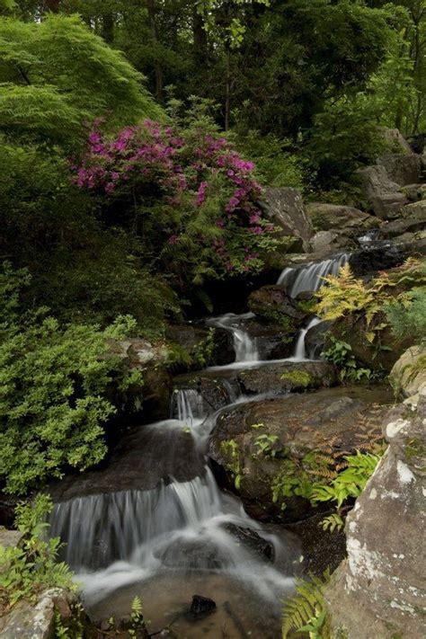 garvan woodland gardens springs ar springs