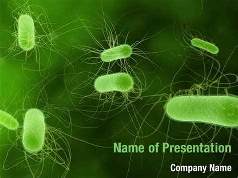 powerpoint themes bacteria bacteria powerpoint templates bacteria powerpoint
